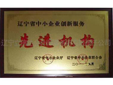 辽宁省中小企业创新服务先进机构